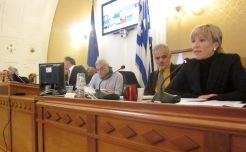 Η αντιπεριφερειάρχης Νοτίου Αιγαίου, υπεύθυνη για την Τουριστική Πολιτική, ενώ παρουσιάζει την πρότασή της. Φωτογραφία από τη σχετική συνεδρίαση που άρχισε σήμερα το πρωί (15|12|12) στην Ρόδο.
