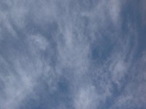 20130414-103443.jpg