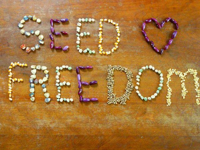 seedfreedom