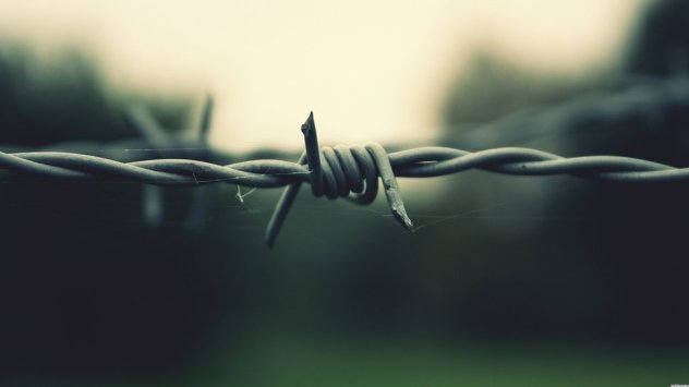 890617__web-sandbox-wallpaper-background-spider-barbed-images_p